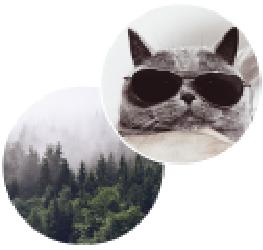 [cml_media_alt id='770']rozne-awatary[/cml_media_alt]